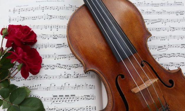Bloecher Strings Announces Inaugural Semester