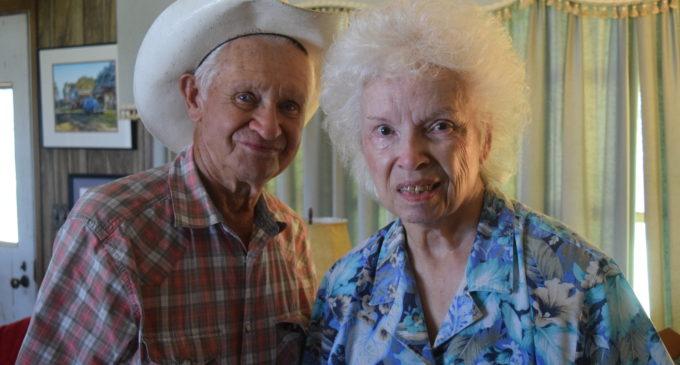 Bluegrass Festival Celebrates 40th Anniversary