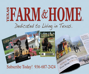 farm_home_300x250.jpg
