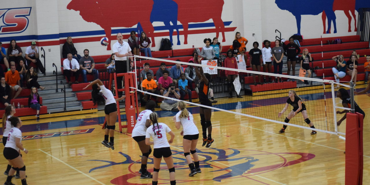 Lady Elks Spike Lady Panthers in Must Win Game