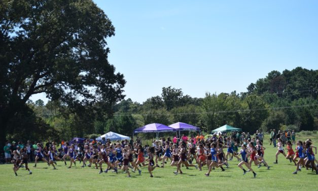 Area Cross Country Runners Compete at State
