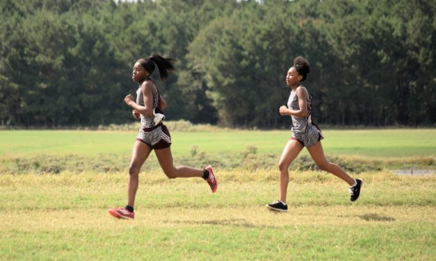 Area Teams Dominate District 20-2A Cross Country Meet