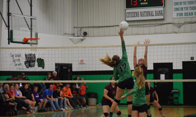 Lady Tigers Pay Back Lady Lions for Earlier Loss