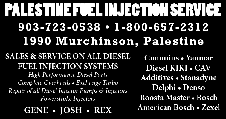 palestine-fuel-injection-service-small-031016.jpg