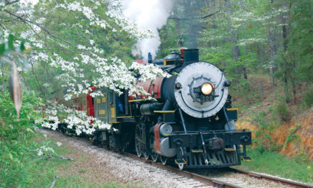 79th annual Dogwood Trails Celebration to kick off March 24