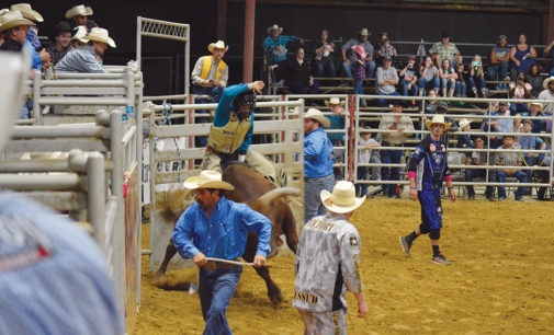 Crockett Lions Club PRCA Rodeo Results Announced