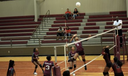 Sandiettes Storm past Lady Wolves