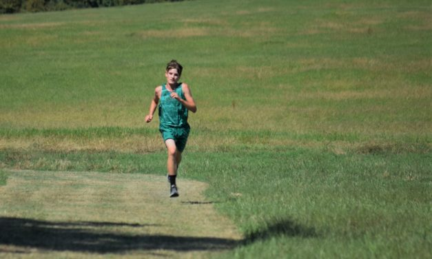 Sandiettes, Tigers Win District Cross Country Titles