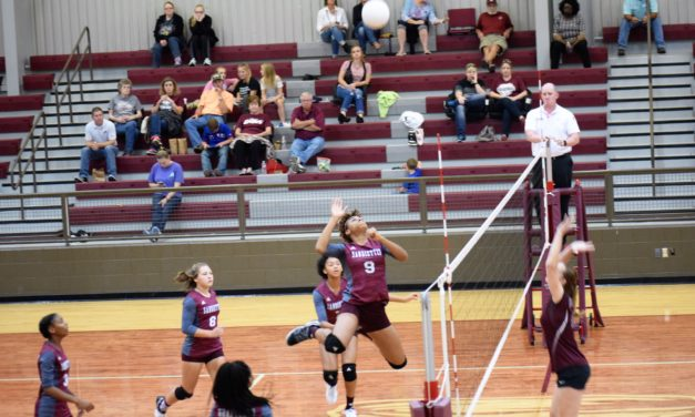 Sandiettes Breeze by Lady Lions in Three