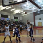 Sandiettes Take Down Lady Owls