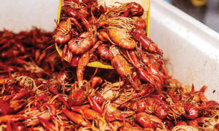 N'Awlins Crawfish Festival Looks to 'Connect With the Community'