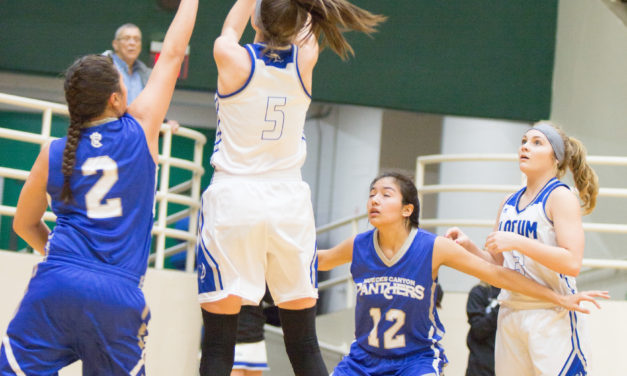 Lady Mustangs Trample Lady Panthers, 84-46