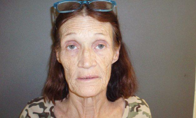 Traffic Stop Leads to Felony Drug Arrest