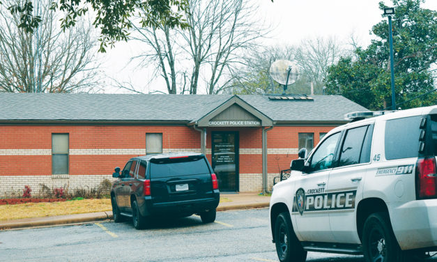 Houston County Crime Rate – How Has it Changed?