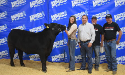 Anderson County Fair Crowns Grand Champions and Reserve Champions