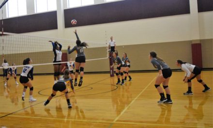 Preview: Cayuga Lady Wildcats Volleyball