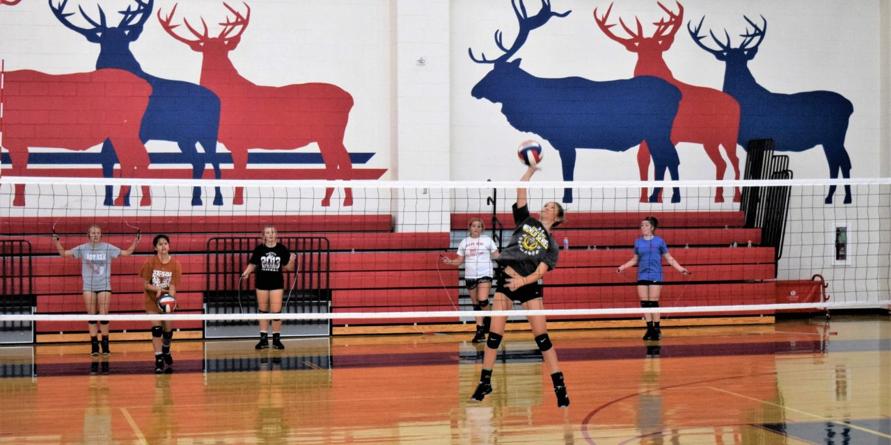 Preview: Elkhart Lady Elks Volleyball