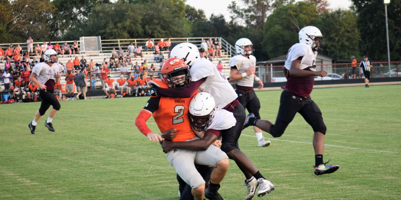 Preview: Lovelady Lions Football