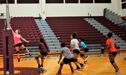 Preview: Palestine Lady Cats Volleyball