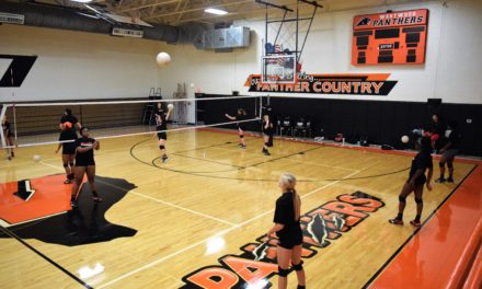 Preview: Westwood Lady Panther Volleyball