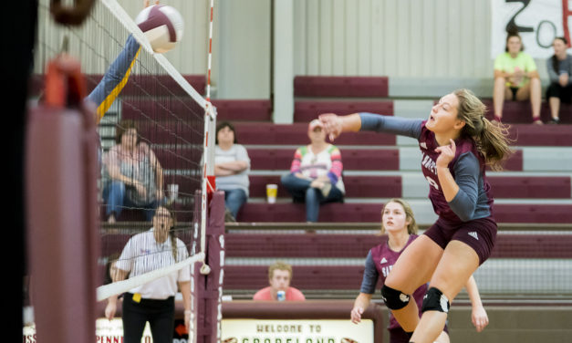 Sandiettes Come up Short against Lady Wildcats