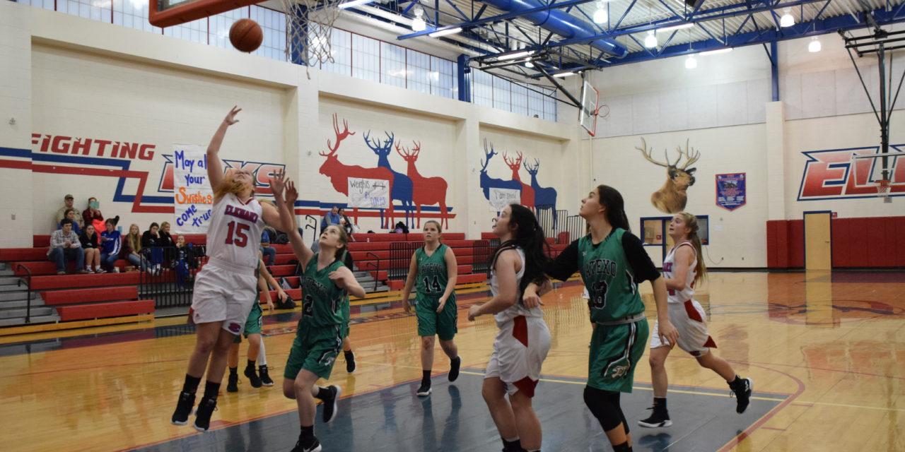 Lady Elks Drop Lady Tigers, 41-32