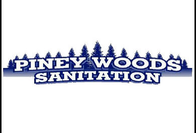 Progress Report on Piney Woods Sanitation Given to Comm. Court