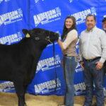 2019 ACYLA Livestock Show Begins Sunday